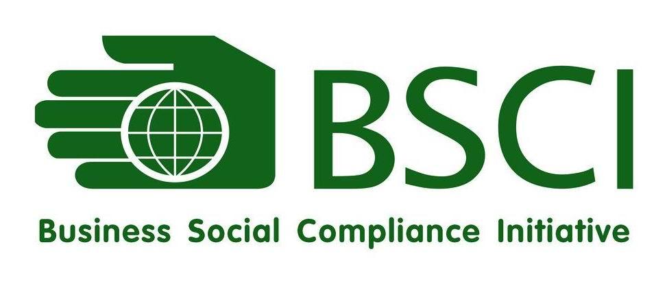Congratulations Seekas Has Passed Bsci Audit Bluetooth